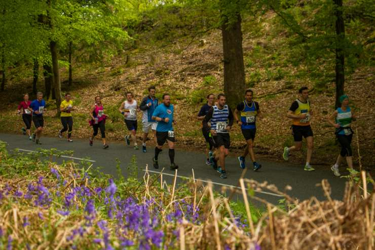 Runners And Bluebells